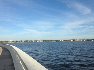 Beautiful Bayshore Blvd