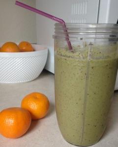 Fruit smoothie-post blend