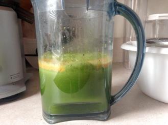 Citrus Apple Juice 2