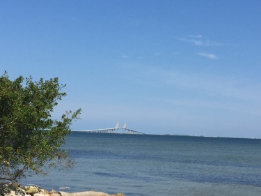 Beautiful Skyway Bridge